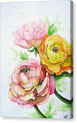 Ranunculus Flowers Canvas Print by Zaira Dzhaubaeva
