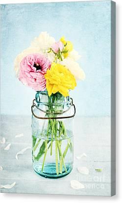 Ranunculus In A Mason Jar Canvas Print by Stephanie Frey