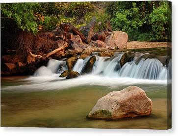 Rapids, Virgin River, Zion National Canvas Print by Michel Hersen