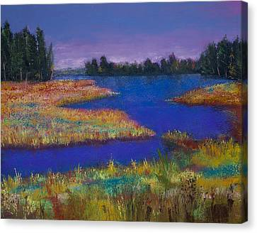 Raquette Lake Canvas Print by David Patterson