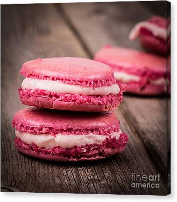 Raspberry Macarons Retro Canvas Print by Jane Rix