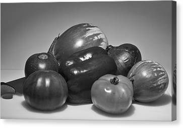 Canvas Print featuring the photograph Ratatouille  by Ricky L Jones