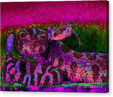 Rattlesnake 20130204m80 Canvas Print by Wingsdomain Art and Photography