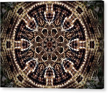 Rattlesnake Circle Canvas Print