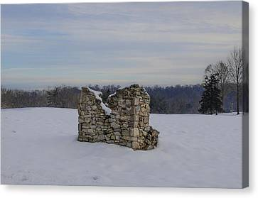Ravages Of Winter Canvas Print by Bill Cannon