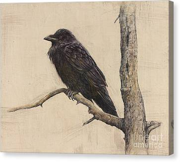 Raven Canvas Print by Lori  McNee