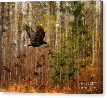 Raven Wood Canvas Print by Judy Wood