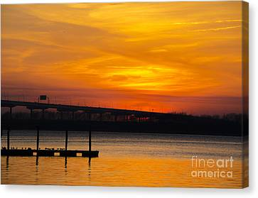 Canvas Print featuring the photograph Orange Blaze by Dale Powell