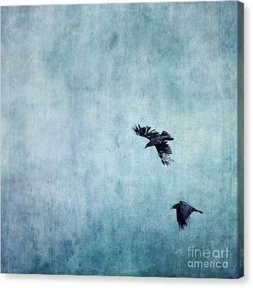 Ravens Flight Canvas Print