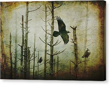 Ravens Of The Mist Artistic Expression Canvas Print by Randall Nyhof