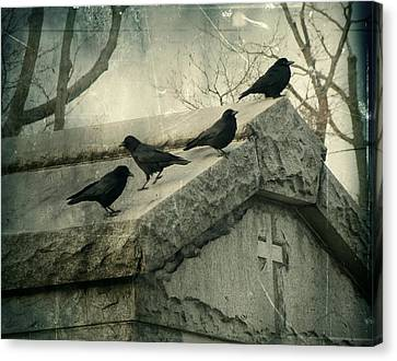 Ravens On A Gray Day Canvas Print