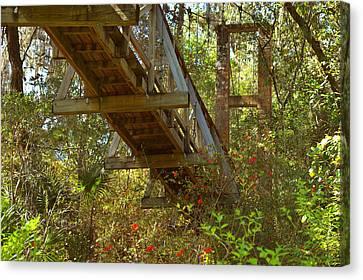 Footpath Canvas Print - Ravine State Gardens Palatka Florida by Christine Till