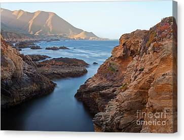 Canvas Print featuring the photograph Ray Of Sunshine by Jonathan Nguyen