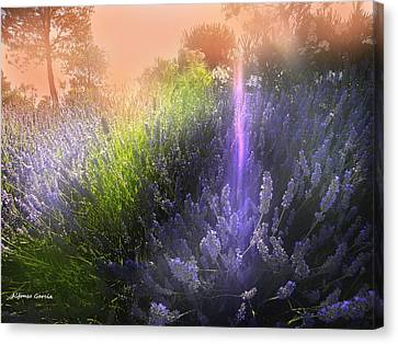 Canvas Print featuring the photograph Rayo De Luz by Alfonso Garcia