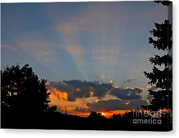 Rays And Shine Canvas Print