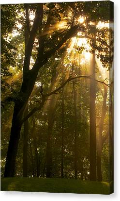 Canvas Print featuring the photograph Rays Of Hope by Photography  By Sai