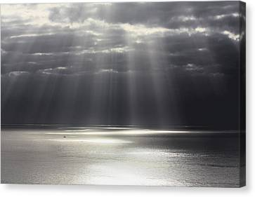 Rays Of Hope Canvas Print by Shane Bechler