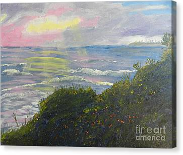 Rays Of Light At Burliegh Heads Canvas Print by Pamela  Meredith