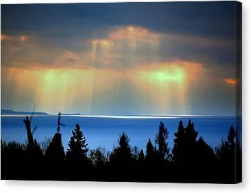 Rays Of Light Canvas Print