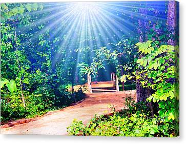 Rays Of Light To Guide The Path Canvas Print by Judy Palkimas