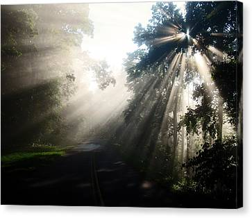 Rays On The Road  Canvas Print by Davids Digits