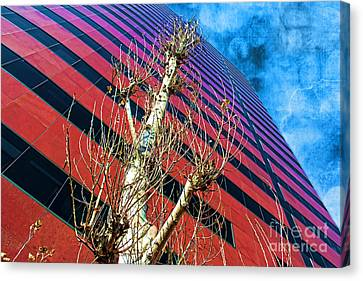 Reach For The Sky Canvas Print by Mariola Bitner