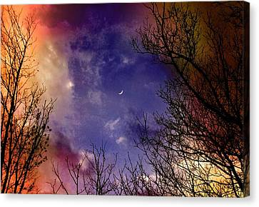 Reaching For The Moon 2 Canvas Print by Susan Crossman Buscho