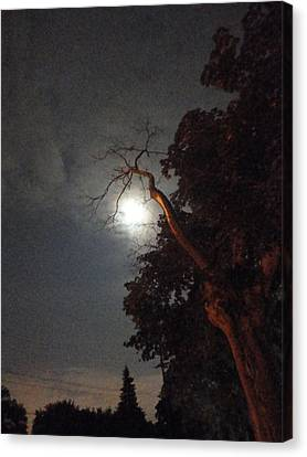 Reaching For The Moon Canvas Print by Guy Ricketts