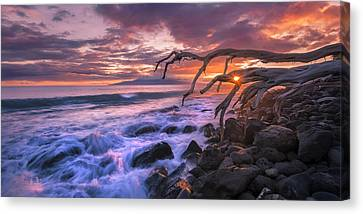 Reaching For The Pacific Canvas Print by Hawaii  Fine Art Photography