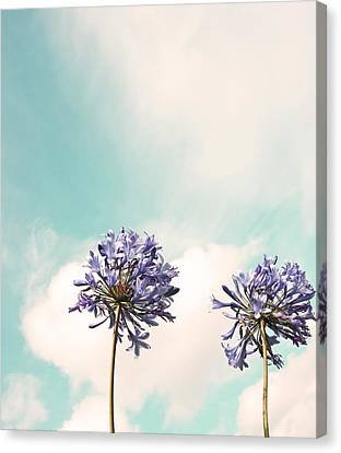 Reaching For The Sky Canvas Print by Brooke T Ryan