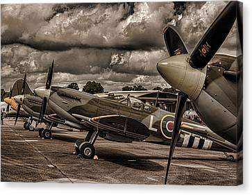 Ready For Action Canvas Print by Martin Newman