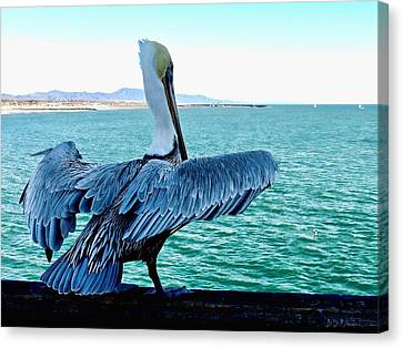 Ready For Takeoff Canvas Print by Brian D Meredith