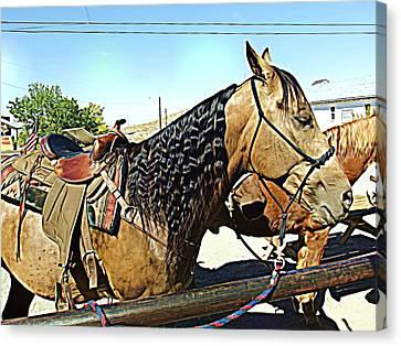 Western Canvas Print - Ready To Ride by Cynthia Nunn
