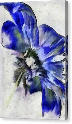 Rear View Canvas Print by Jill Balsam