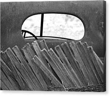Rear View Canvas Print by Tom DiFrancesca