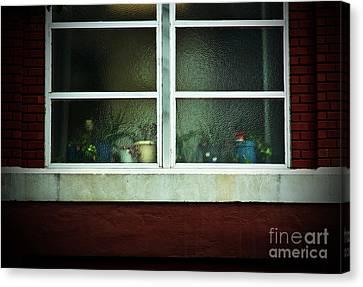 Rear Window Canvas Print by Fred Lassmann