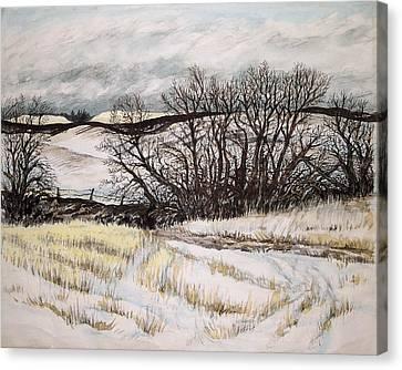 Reardon Wa Fields Canvas Print