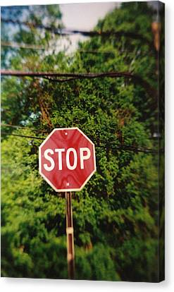 Recesky - Stop Sign Canvas Print by Richard Reeve