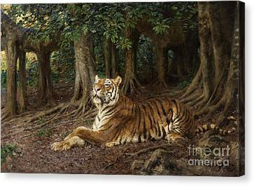 Reclining Tiger Canvas Print by Pg Reproductions