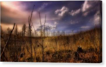 Canvas Print featuring the photograph Recovery by Ellen Heaverlo