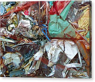 Recycle Canvas Print by Laurie Tsemak
