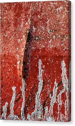 Red Abstraction 1 Canvas Print by Tom Druin