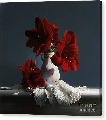 Red Amaryllis Flowers  Canvas Print by Larry Preston