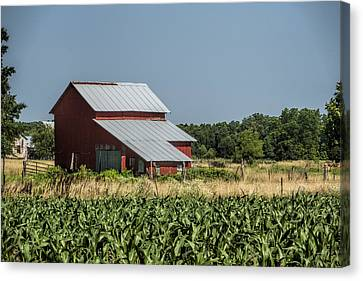 Red Amish Barn And Corn Fields Canvas Print by Kathy Clark