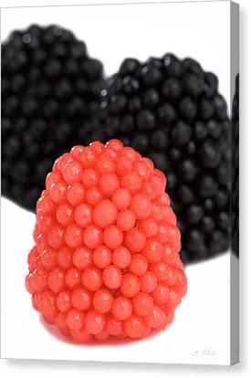 Red And Black Gummy Raspberries Canvas Print by Iris Richardson