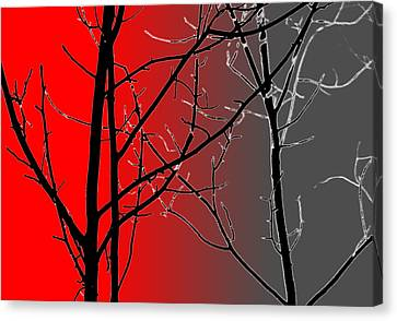 Red And Gray Canvas Print by Cynthia Guinn