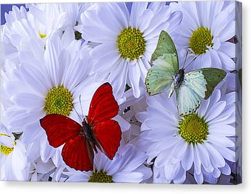 Red And Green Butterflies Canvas Print