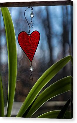 Red And Green Canvas Print by Wayne Meyer