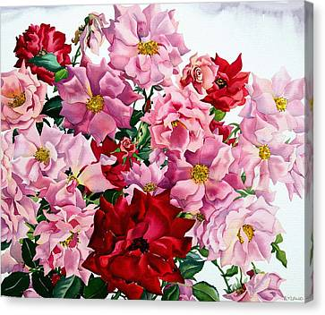 Red And Pink Roses Canvas Print by Christopher Ryland