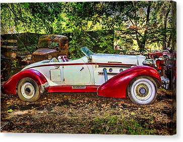 Red And White Auburn Canvas Print by Garry Gay